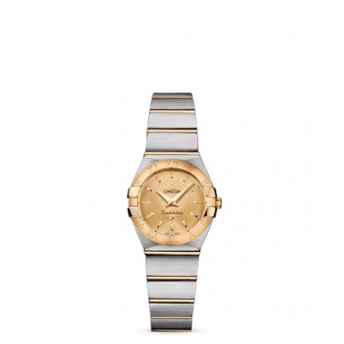 Image of Omega Constellation 24 Quartz Brushed 123.20.24.60.08.001